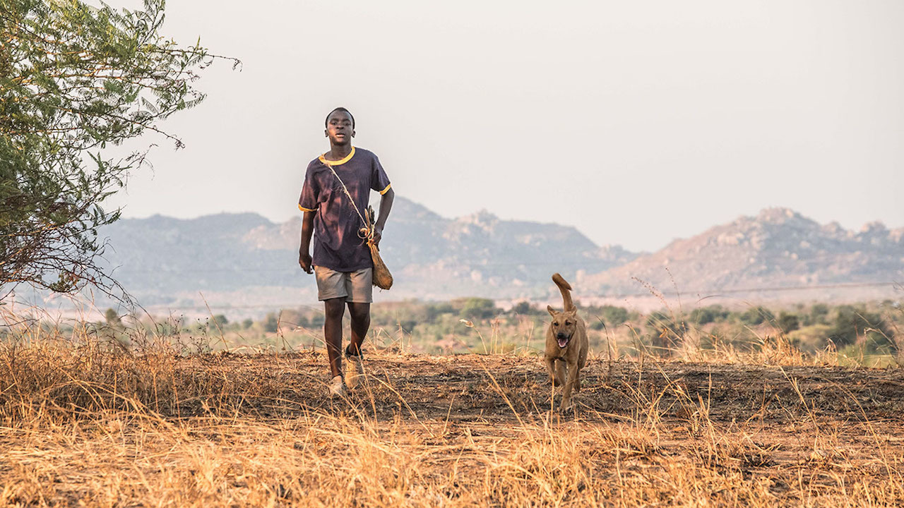 The Boy Who Harnessed the Wind - Still 1